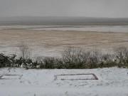 うっすらと積もる雪