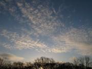 林の上の雲