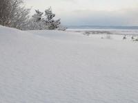 ふかふかの新雪