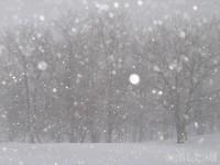 吹雪のとき