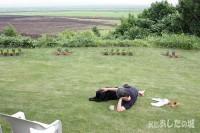 芝刈りのあと庭でくつろぐ宿主とのんた君