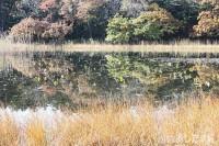 沼には異次元の世界がある?
