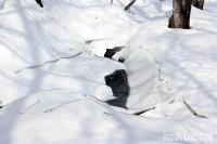 氷が割れて水の流れが顔を出す