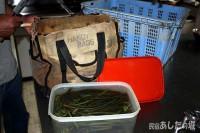 年季の入った山菜袋!