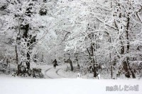 雪道をダッシュして登校