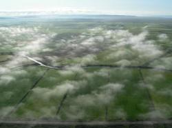 牧草地と雲