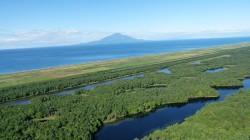 原始砂丘林と利尻島