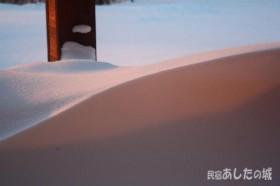 朝日があたった雪