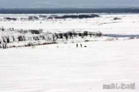雪原を歩く二人と一匹