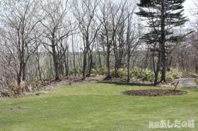 丸い花壇と芝生