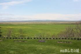 庭と牧草地と原野