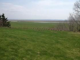 芝生と原野