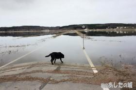 水没した農道