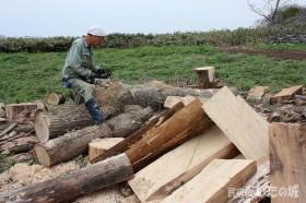チェーンソーで木を切る