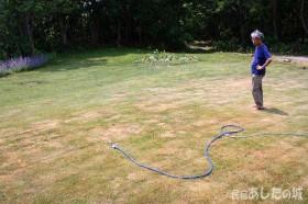 風呂の残り水を芝生に