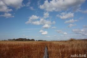 草紅葉のサロベツ湿原