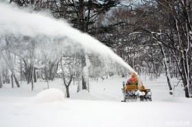 やはり除雪が早い