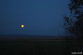 原野に昇る満月