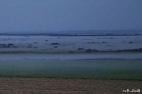 原野にでる霧