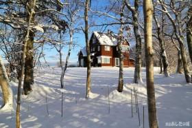 一晩で雪景色に