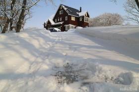 ふんわり雪が積もる