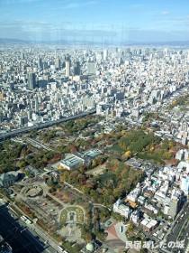天王寺公園、ミナミ、キタも