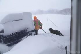 除雪に向かう迷コンビ