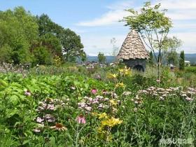 上野ガーデン