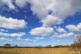 草紅葉と秋の空