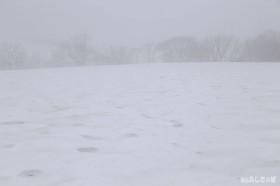 吹雪でもないのにあたり真っ白