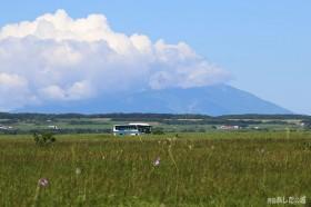 サロベツ原野を走る沿岸バス