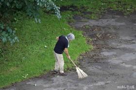 クルミを掃除する