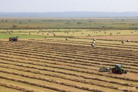 牧草ロール作り