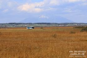 沿岸バスと秋のサロベツ原野