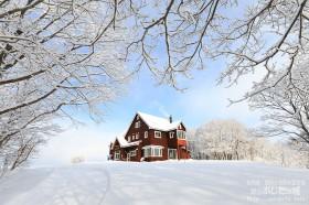 雪が降り積もった朝
