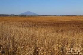 秋のサロベツ原野と利尻