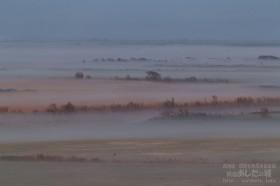 原野にかかる霧