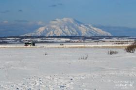 冬の利尻と沿岸バス