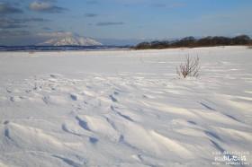 利尻と雪面にできた風紋