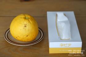 大きなレモンをいただきました