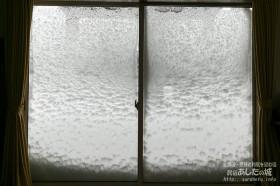 窓についた雪