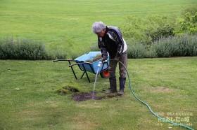 芝生の補植