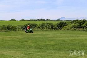 裏庭の芝刈り