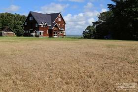 大規模に芝生が枯れる