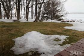 雪解けが進む庭