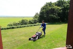 建物周りの芝刈りは息子が