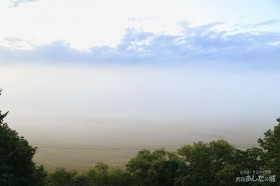 サロベツ原野の霧