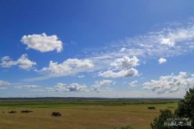 サロベツの雲